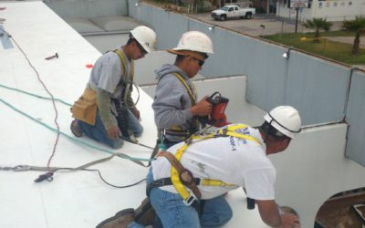 Single Ply Roofing Information