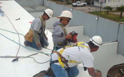 What You Need To Know When Choosing A Roof Contractor | Houston, TX